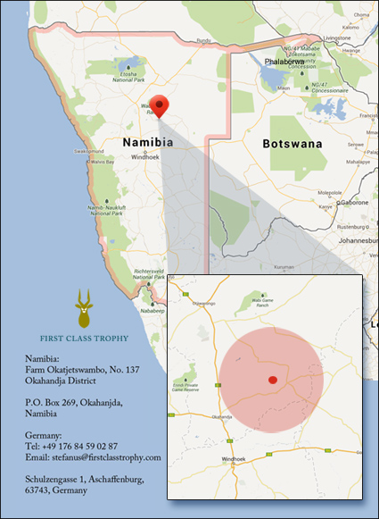 namibia-taxidermist