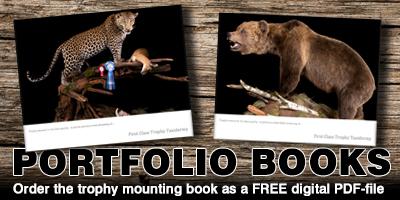 PortfolioBooks